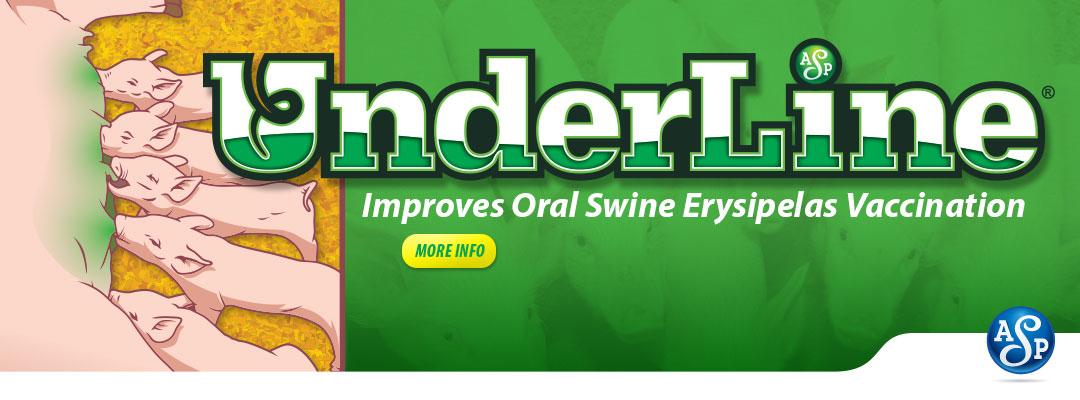 Underline-Slide