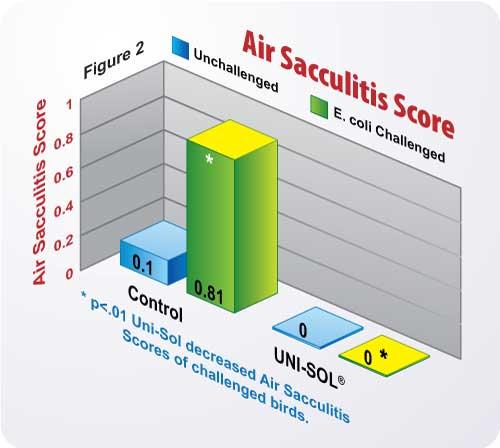 Figure 2 Air Sacculitis Score Chart